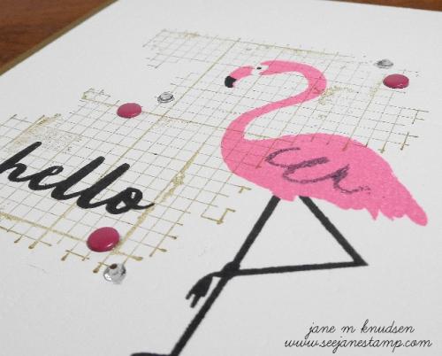 Www.seejanestamp.com flamingo 2 (640x515)